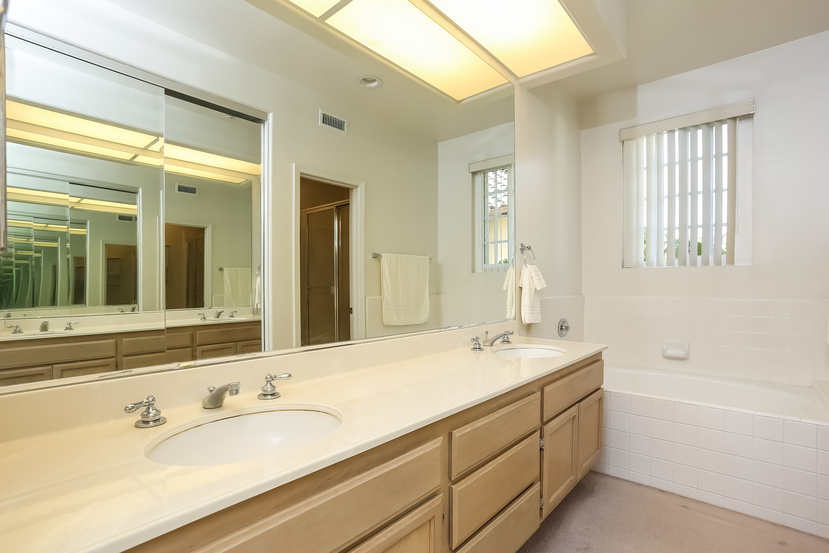 13445-savanna-master_bathroom